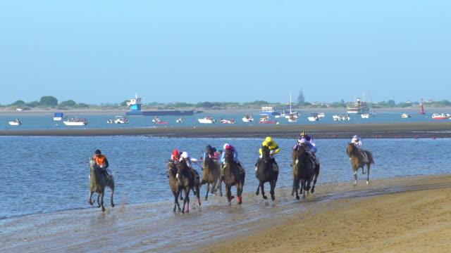 vídeos de stock, filmes e b-roll de horses running in a typical beach race in spain no - montar um animal