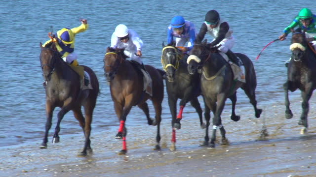 Horses running in a typical beach race in Spain NO