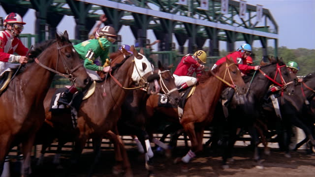 ms slo mo horses running out of the starter gate at beginning of race / beulah park, columbus, ohio - horse racing stock videos & royalty-free footage