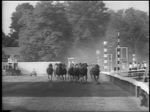 b/w 1962 horses running towards camera at preakness / baltimore md / newsreel - 数匹の動物点の映像素材/bロール