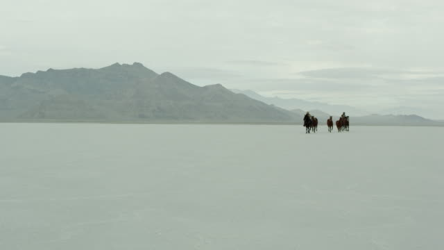 stockvideo's en b-roll-footage met horses running with cowboys riding across salt flats. - recreatief paardrijden