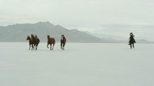 horses running with cowboys riding across salt flats. - bonneville salt flats stock videos & royalty-free footage