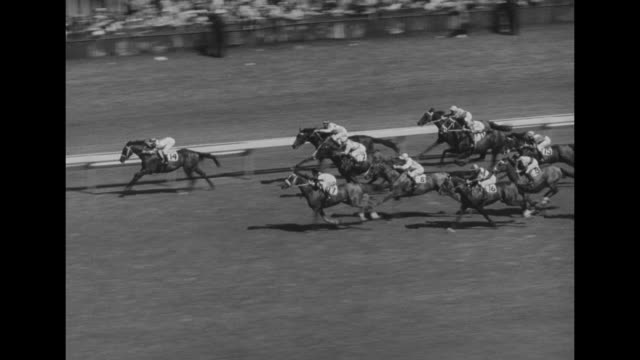 horses shoot out the starting gate and make first turn / horses at final turn following darwon's blue ocean - starting gate stock videos and b-roll footage