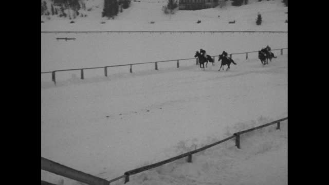 VS horses start race on far side of track / VS jumping fences in steeplechase running past finish line / VS galloping horses pulling skiers behind...