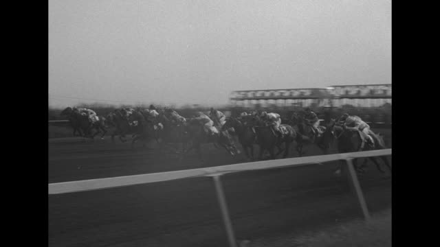 horses trot on racetrack past grandstands in background at arlington park / side view starting gate / vs gate opens horses emerge as arlington... - blanket background stock videos & royalty-free footage
