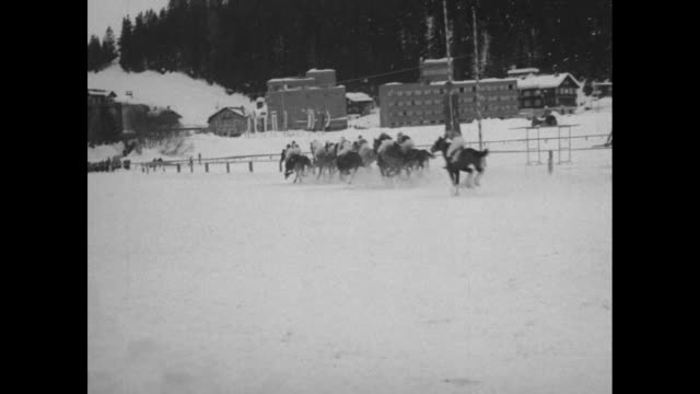 VS horses walked in snow jockeys mounting race is run / tractor on skis smooths track and man shoveling snow / VS spectators / VS harness racing with...
