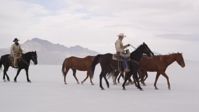horses walking with cowboys riding across salt flats. - bonneville salt flats stock videos & royalty-free footage