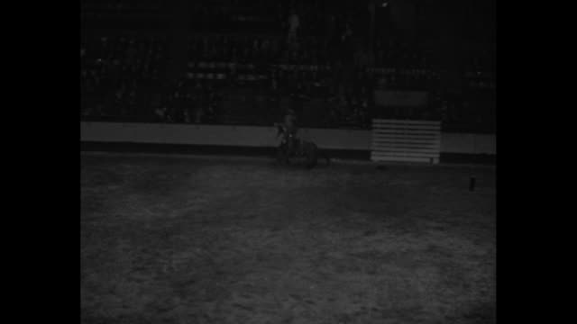 horses with flagcarrying riders run in opposing lines on madison square garden arena floor / vs several shots of cowboys riding bucking broncos and a... - bucking stock videos & royalty-free footage