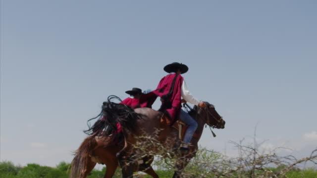 vídeos de stock, filmes e b-roll de horses with ridders - américa do sul
