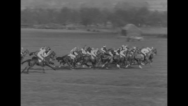 horses with riders jump over hurdle during national hunt chase challenge cup race / horses take off from starting line at beginning of race / close... - hurdling horse racing stock videos and b-roll footage