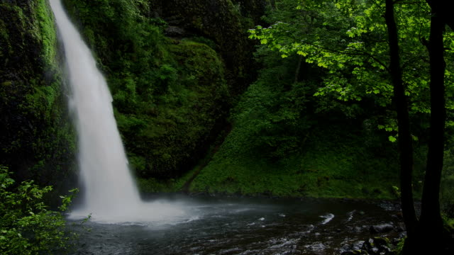 Horsetail Falls cascade into the Columbia River Gorge in the Silver Falls of Oregon.