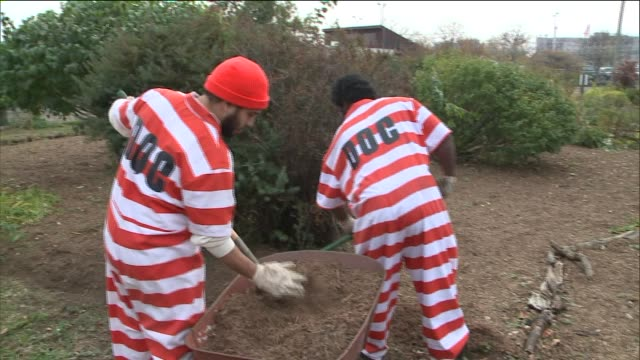 vídeos de stock, filmes e b-roll de horticultural therapy for inmates at rikers island correctional facility two inmates shoveling at rikers island garden at rikers island on november... - grade de prisão