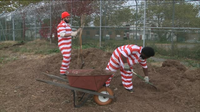 horticultural therapy for inmates at rikers island correctional facility two male inmates doing yard work in jail garden at rikers island on november... - psychisches problem stock-videos und b-roll-filmmaterial