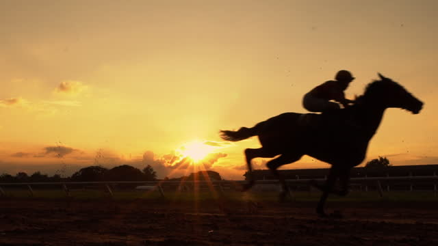 slo mo hose racing in silhouette - horse racing stock videos & royalty-free footage