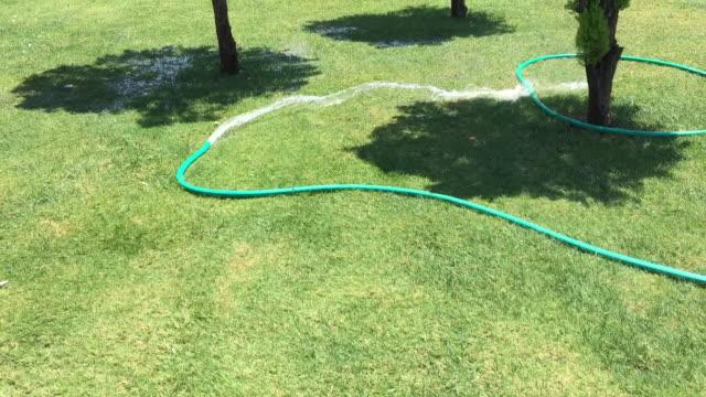 vidéos et rushes de tuyau arrosant le jardin sous la lumière du soleil. - flexible