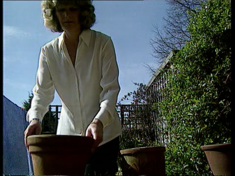 hospital pays damages to widow of smoker england andrea gibson sorting out plant pots in garden andrea looking at plant andrea gibson interview sot... - widow stock videos and b-roll footage