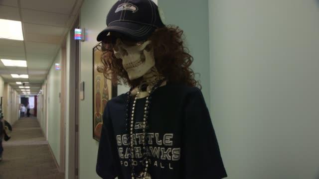hospital plastic skeleton wears seattle seahawks cap shirt and paraphernalia - plastic cap stock videos & royalty-free footage