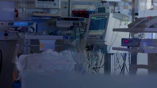 vídeos y material grabado en eventos de stock de sala de hospital para bebés nacidos prematuramente - sección hospitalaria