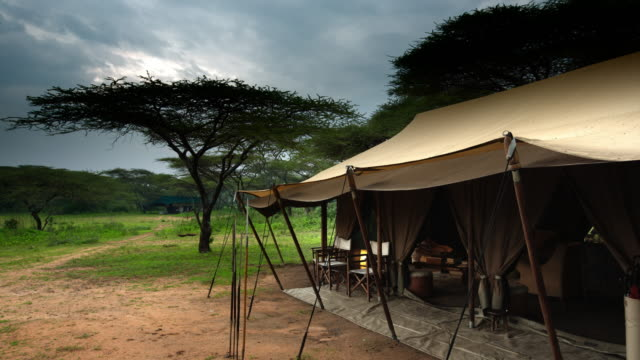 hospitality tent at safari destination - awning stock videos and b-roll footage