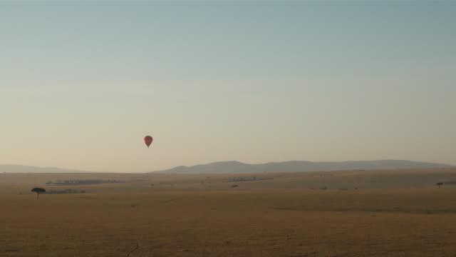 ws pov aerial hot air balloon flying over wide grasslands of masai mara national park just before sunrise audio / masai mara, rift valley, kenya - komplett stock-videos und b-roll-filmmaterial