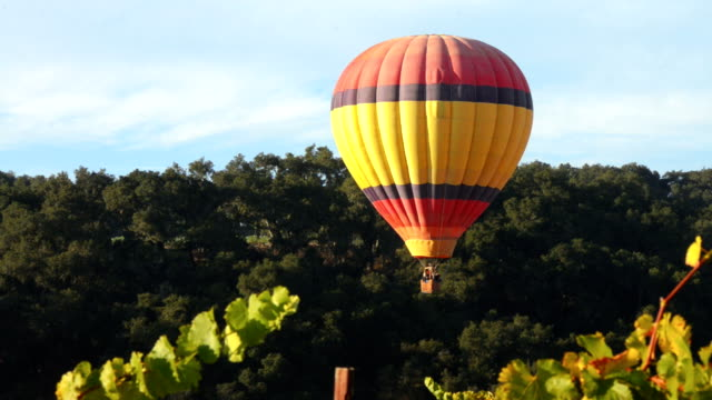 hot air balloon over wine country, paso robles, california - vineyard stock videos & royalty-free footage