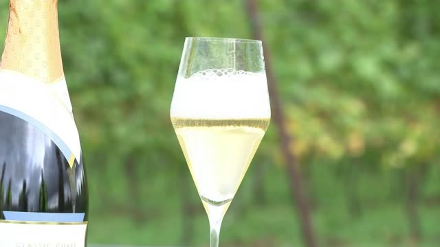 hot and dry summer followed by wet spell helps english winemakers; england: ext bottle of sparkling white wine popping open wine poured into glass - wet wet wet stock videos & royalty-free footage