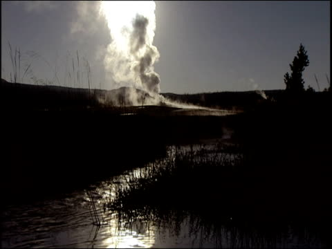 Hot and smoky gas emerges from geyser silhouetted reeds in dark lake in foreground Yellowstone National Park