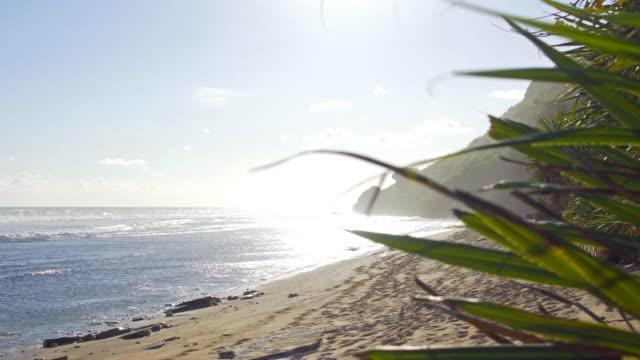 hot day at the beach - paesaggio marino video stock e b–roll