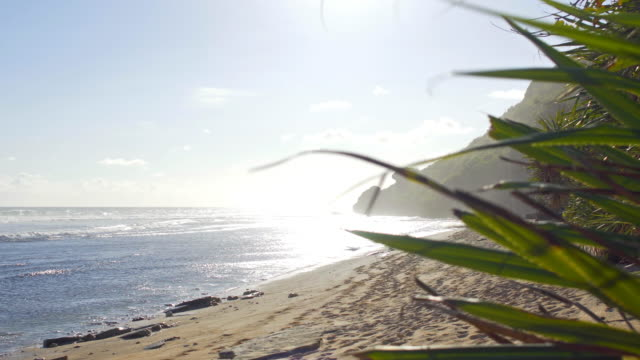 Varm dag på stranden