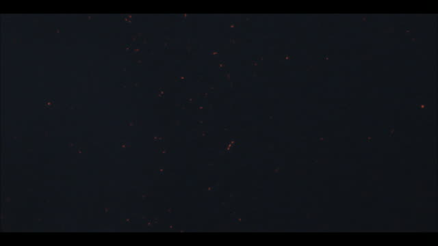 hot glowing ash falls through the night sky. - ash stock videos & royalty-free footage