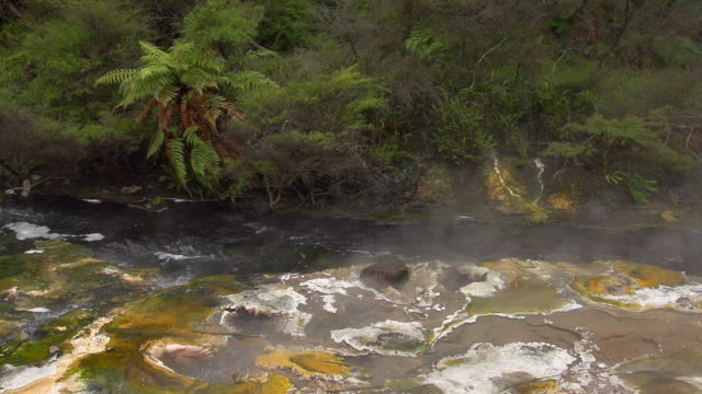 slow motion: hot spring new zealand - north island new zealand stock videos & royalty-free footage