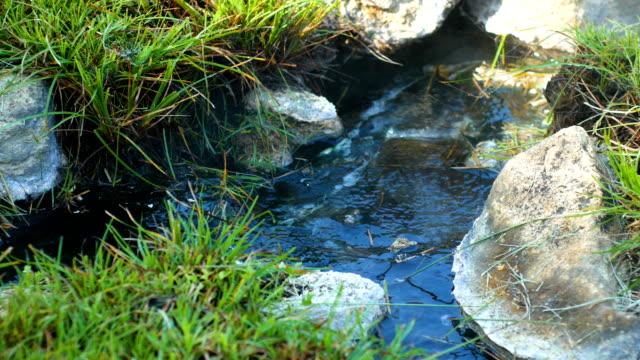 vidéos et rushes de printemps chaud avec le soleil du matin - piscine thermale