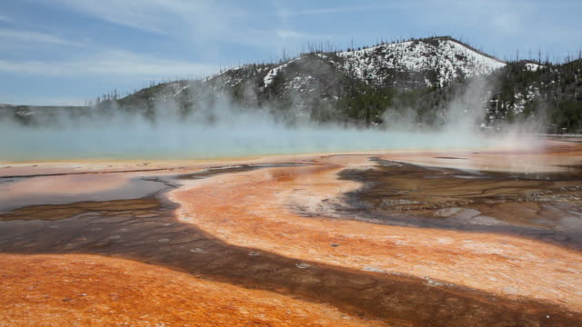 hot springs landscape - yellowstone national park