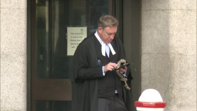 hot weather causes travel disruption old bailey reporter to camera barrister using mobile phone outside court student posing in front of water... - オールドベイリー点の映像素材/bロール