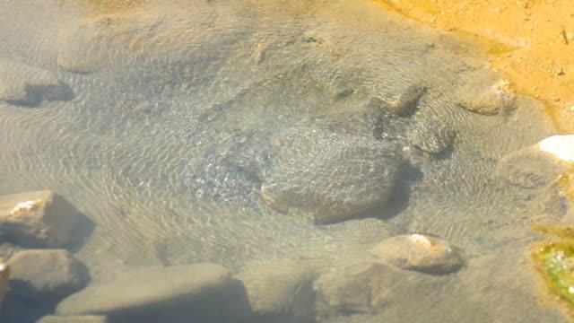 vidéos et rushes de source chaude dans la nature avec la lumière du soleil - piscine thermale