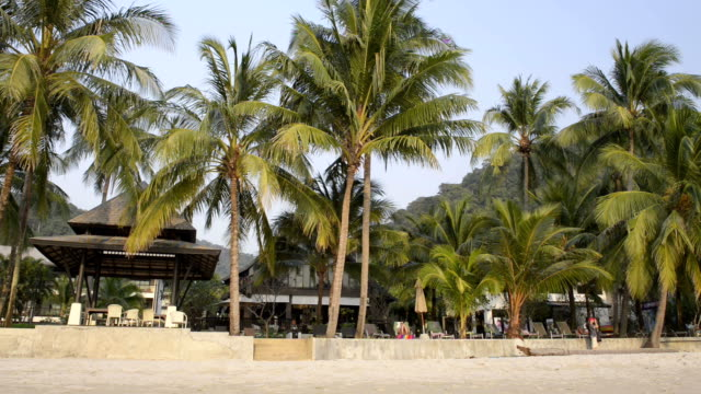 Hotel at sandy beach with palm trees
