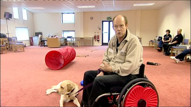 hounds for heroes charity / first assistance dogs start their training england hampshire ramsdean ext allen parton along in wheelchair with his... - open wallet stock videos & royalty-free footage