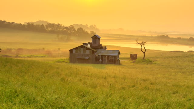a house and fog in anseong farmland at sunrise - dawn stock videos and b-roll footage