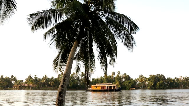 house boat backwaters alleppey, kerala, india, asia - backwater stock videos & royalty-free footage