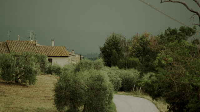 House covered by trees, in Mediterranean landscape