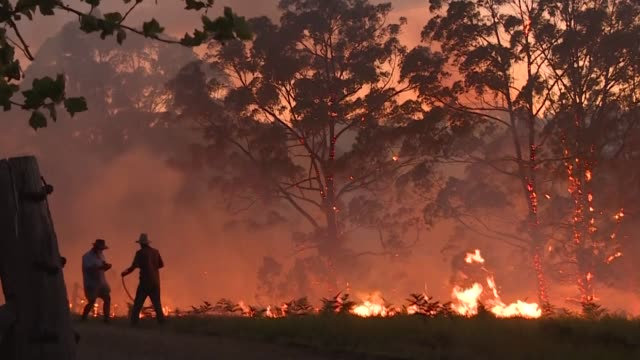 vídeos y material grabado en eventos de stock de house in rural new south wales if threatened by flames as bushfires rage across the east coast of australia with firefighters and residents battling... - australia