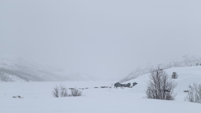 slo mo house in the distance in norway - farmhouse stock videos & royalty-free footage