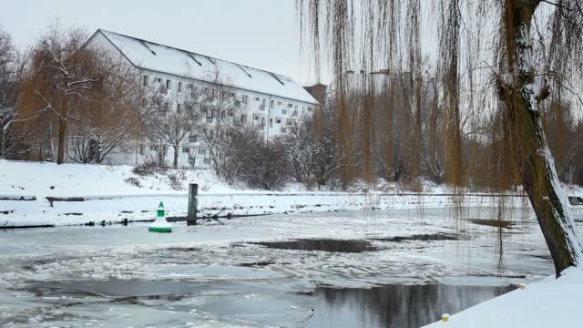 in der nähe des canal im winter - trauerweide stock-videos und b-roll-filmmaterial