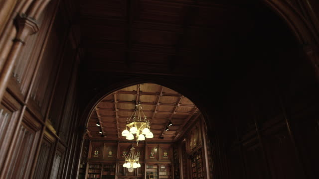 house of lords interior - bibliothek stock-videos und b-roll-filmmaterial