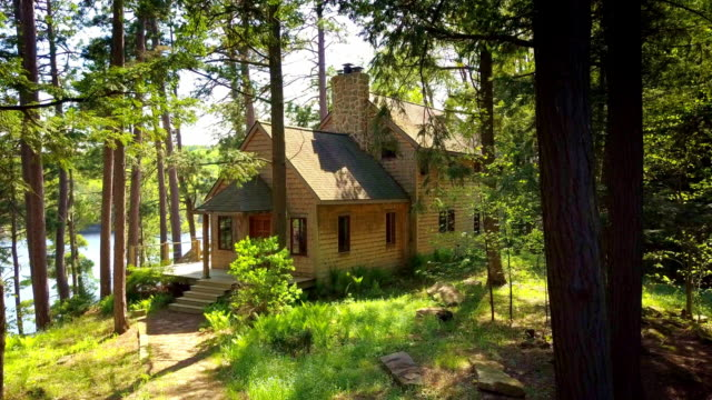 house on bluff above lake with red pines - コテージ点の映像素材/bロール