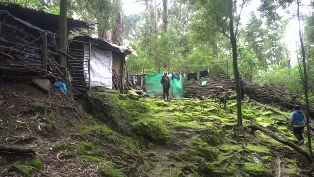 """house stands where a family lives in the village """"los cerezos"""" on january 09, 2021 in bogota, colombia. approximately 12 families live with the risk... - south america stock videos & royalty-free footage"""
