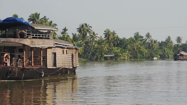 houseboats floating on a river surrounded by palm trees, kerala backwaters, india - canal stock videos & royalty-free footage