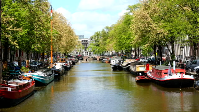 houseboats in amsterdam - canal stock videos & royalty-free footage
