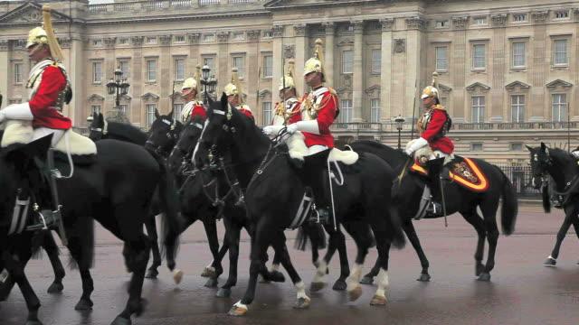 ms household cavalry at buckingham palace audio / london, united kingdom - arbetsdjur bildbanksvideor och videomaterial från bakom kulisserna