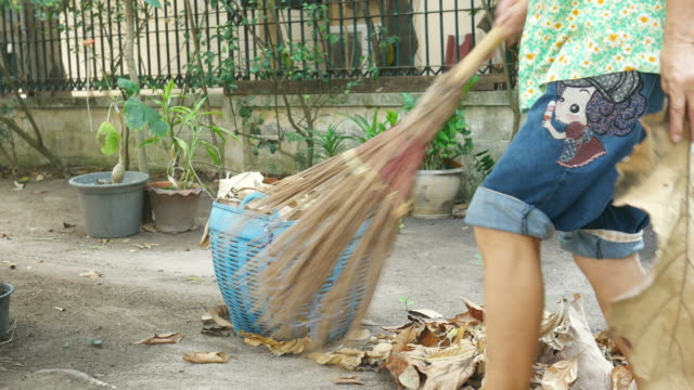 housekeeper  sweeping foliage - environmental conservation stock videos & royalty-free footage